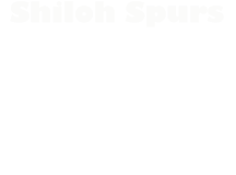Shiloh Spurs – Chapter of the NWTF